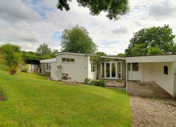 Thumbnail 4 bed detached bungalow for sale in Yew Tree Walk, Frimley, Camberley