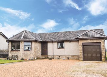 Thumbnail 4 bedroom bungalow for sale in Slamannan Road, Limerigg, Falkirk
