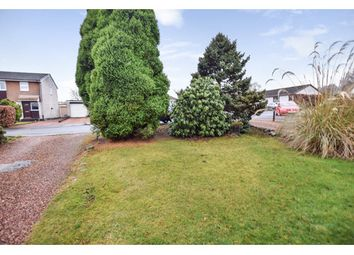 Thumbnail 2 bed bungalow to rent in Muirend Gardens, Perth
