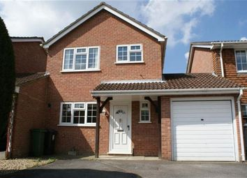 Thumbnail 3 bed detached house to rent in Forest Drive, Chineham, Basingstoke