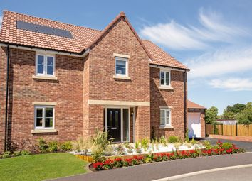"Thumbnail 5 bed detached house for sale in ""The Rochester"" at St. Thomas's Way, Green Hammerton, York"