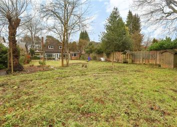 Thumbnail 4 bed detached bungalow for sale in The Avenue, Crowthorne, Berkshire