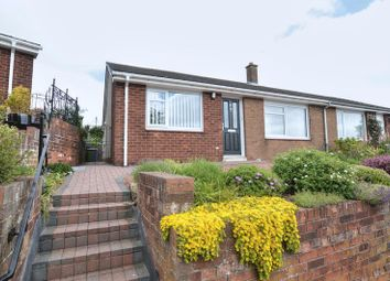 Thumbnail 2 bedroom bungalow for sale in Curly Lane, Lesbury, Alnwick