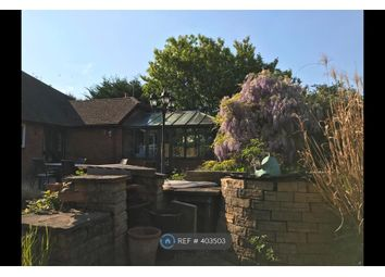 Thumbnail 6 bed detached house to rent in Basingstoke Road, Beech, Alton