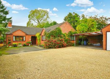 4 bed detached bungalow for sale in Cemetery Road, Market Drayton TF9
