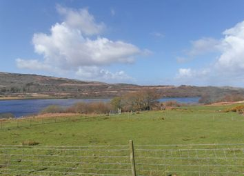 Photo of Dervaig, Isle Of Mull PA75