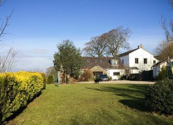 Thumbnail 5 bed detached house for sale in Newlands, Natland, Cumbria