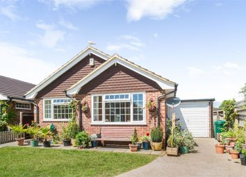 Thumbnail 3 bed detached bungalow for sale in Swanley Close, Eastbourne, East Sussex