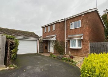 Thumbnail 4 bed detached house to rent in Lingswood Park, Abington, Northampton