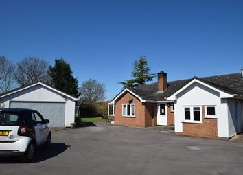 Thumbnail 3 bed detached bungalow to rent in Pool Anthony Drive, Tiverton
