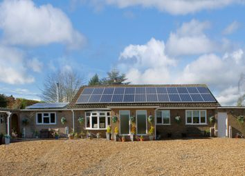 Thumbnail 5 bed bungalow for sale in Tyree, Knighton-On-Teme