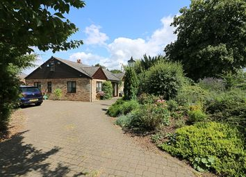 Thumbnail 3 bed detached bungalow for sale in Fersfield Road, South Lopham, Diss