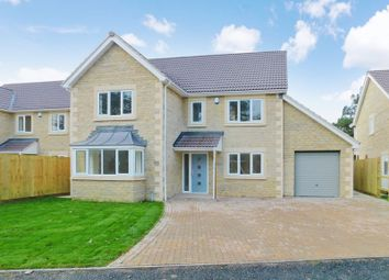 Thumbnail 4 bedroom detached house for sale in Thomas Bunn Close, Frome