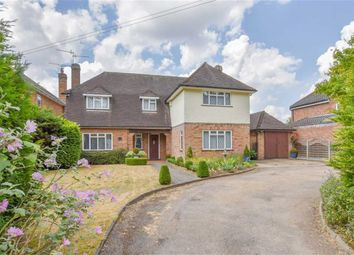 Thumbnail 4 bed detached house for sale in Hoe Lane, Ware, Hertfordshire
