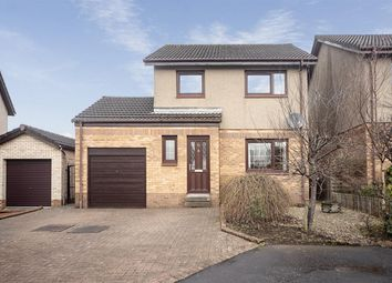 Thumbnail 3 bedroom detached house for sale in Falcon Drive, Larbert