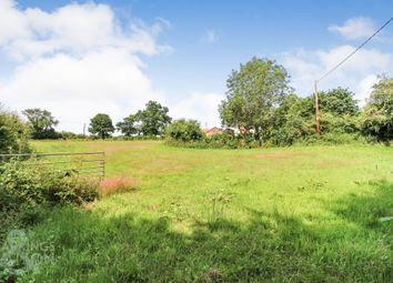 Thumbnail Land for sale in North Walsham Road, Felmingham, North Walsham