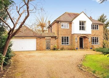 Thumbnail 3 bed detached house to rent in The Chase, Oxshott