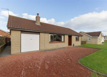 Thumbnail 3 bed detached bungalow for sale in Quarryfield, Seahouses, Northumberland