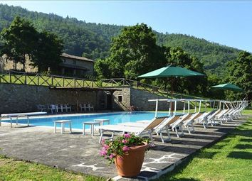 Thumbnail 7 bed country house for sale in 52035 Monterchi, Province Of Arezzo, Italy