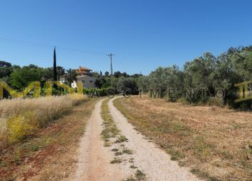 Thumbnail 1 bed country house for sale in Close To Loulé (São Clemente), Loulé, Central Algarve, Portugal