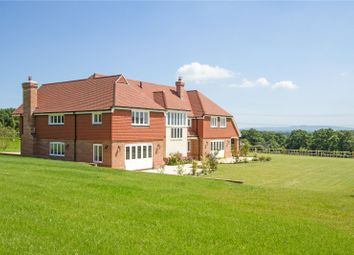 Thumbnail 6 bedroom detached house for sale in Brooks Green, Horsham, West Sussex