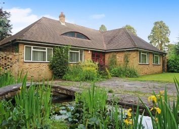 Thumbnail 4 bed bungalow for sale in Leazes Avenue, Chaldon