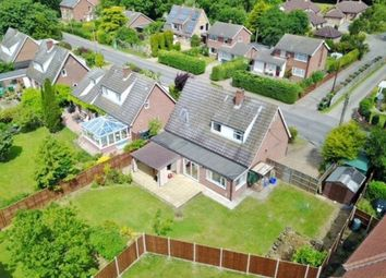 Thumbnail 4 bed detached house for sale in Bunwell Street, Bunwell, Norwich