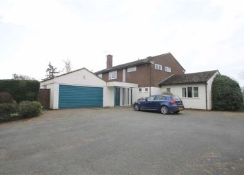 Thumbnail 4 bed detached house to rent in Westbury, Shrewsbury