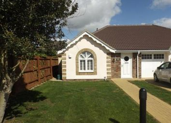 Thumbnail 2 bed bungalow for sale in Cedar Mews, Clacton-On-Sea
