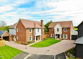 Thumbnail 4 bed detached house for sale in Meadow Gardens, Widford, Ware, Hertfordshire