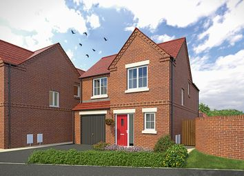 """Thumbnail 3 bed detached house for sale in """"The Newton"""" at Wellow Road, Ollerton, Newark"""