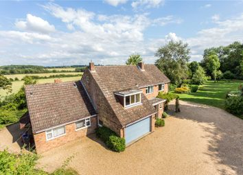 Thumbnail 4 bed detached house for sale in Southern Green, Rushden, Buntingford, Hertfordshire