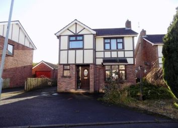Thumbnail 4 bed detached house for sale in Knightsbridge, Lisburn
