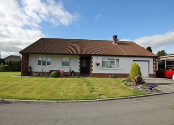 Thumbnail 4 bed detached bungalow for sale in Bro Helyg, Rhydargaeau, Carmarthen, Carmarthenshire