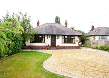 Thumbnail 2 bed detached bungalow to rent in Croeshowell Lane, Rossett, Wrexham