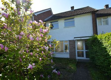 Thumbnail 3 bed terraced house to rent in Prospect Walk, Hereford