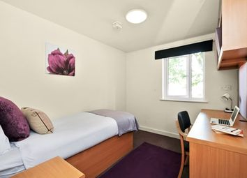 Thumbnail Room to rent in Green Lanes, Holloway