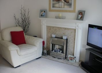Thumbnail 3 bedroom semi-detached house to rent in Puffin Close, Torquay