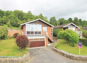 Thumbnail 3 bed bungalow for sale in Scotch Firs, Hereford