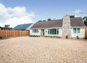 St. Leonards, Ringwood, Dorset BH24. 4 bed bungalow