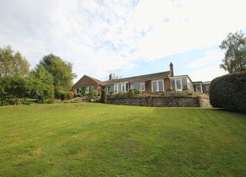 Thumbnail 3 bed detached bungalow to rent in Woodhouse Lane, Holmbury St. Mary, Dorking