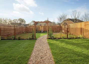 "Thumbnail 3 bedroom detached house for sale in ""The Brook A"" at Amlets Lane, Cranleigh"
