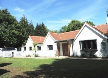 Thumbnail 5 bedroom property to rent in Outdowns, Effingham, Leatherhead