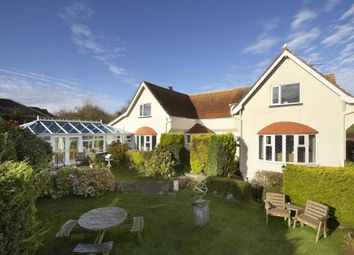 Thumbnail 8 bedroom detached house for sale in Hillhead, Brixham, Devon
