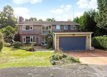 Thumbnail 5 bed detached house for sale in Dolphin Close, Haslemere, Surrey