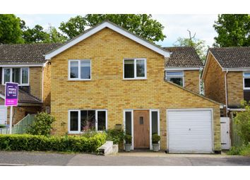 4 bed detached house for sale in Lower Park Walk, Halesworth IP19