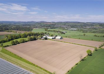Thumbnail Land for sale in Lot 3 - North Rosemount, Blairgowrie, Perthshire