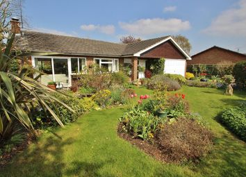 Thumbnail 3 bedroom detached bungalow for sale in Rivacres, Whitchurch Hill, Reading