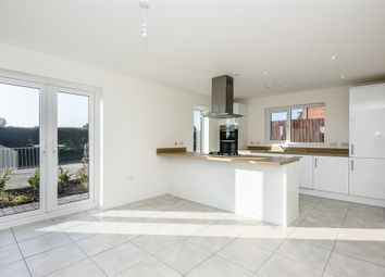 Thumbnail 4 bed detached house for sale in Swans Nest, Brandon Road, Swaffham