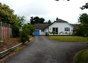 Thumbnail 3 bed detached bungalow to rent in Barrow Road, Payhembury, Honiton